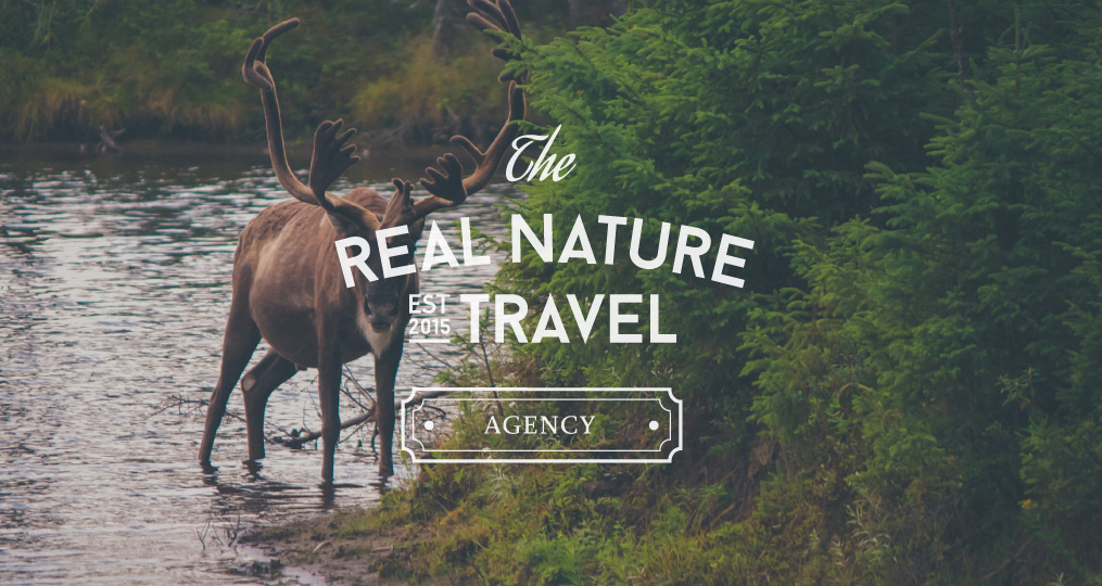THE REAL NATURE TRAVEL AGENCY